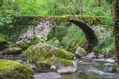 Peyrusse-le-Roc  - pont sur le ruisseau d'Audiernes